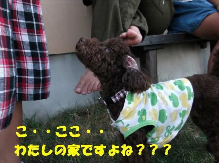 011_convert_20121009182658.jpg