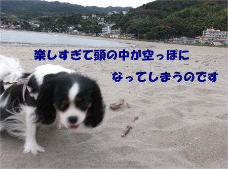 011_convert_20121112172837.jpg