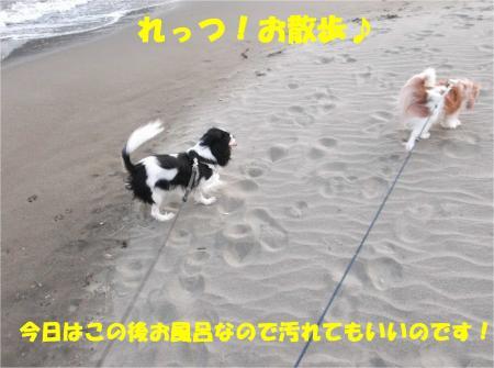 01_convert_20121029173409.jpg
