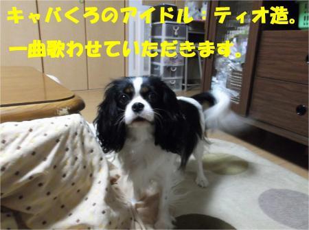 01_convert_20121114180909.jpg