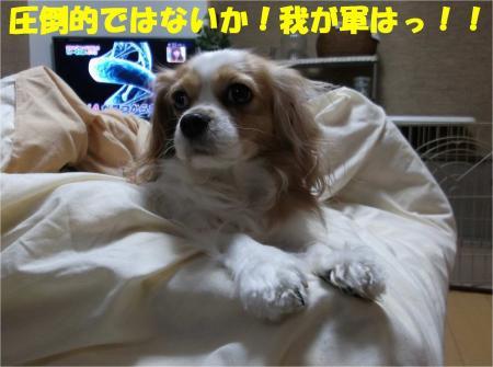 01_convert_20121120193148.jpg