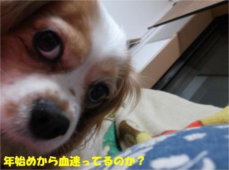 01_convert_20140109174213.jpg