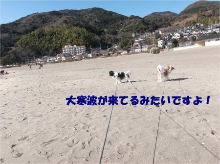 01_convert_20140111134958.jpg