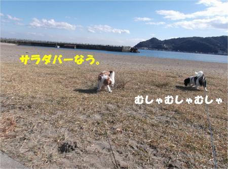 01_convert_20140113171117.jpg