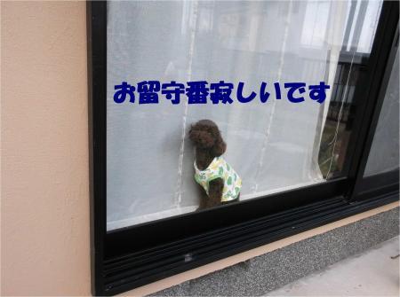 02_convert_20121009182044.jpg