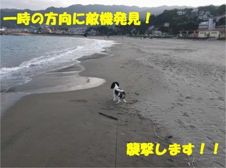 02_convert_20121029173441.jpg