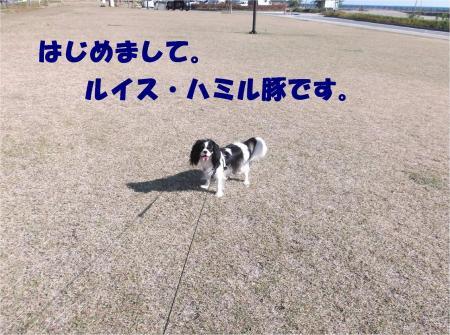 02_convert_20121113171911.jpg