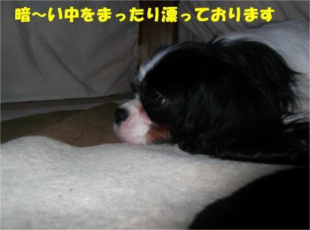 02_convert_20121127174735.jpg