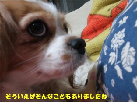 02_convert_20140109174225.jpg