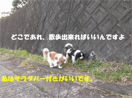 02_convert_20140118165430.jpg