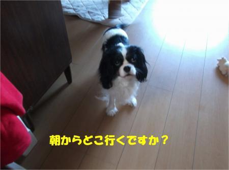 02_convert_20140123190927.jpg