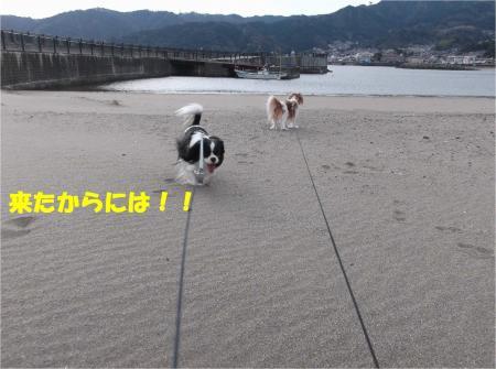 02_convert_20140125143926.jpg