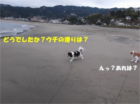 02_convert_20140211115528.jpg