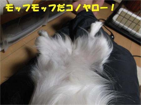 03_convert_20121108173334.jpg