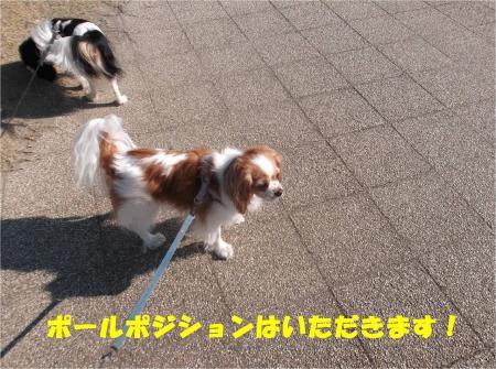 03_convert_20121113171925.jpg