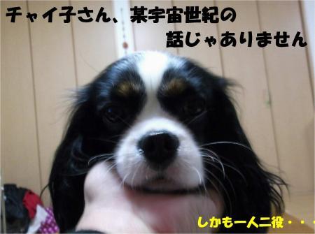 03_convert_20121120193215.jpg