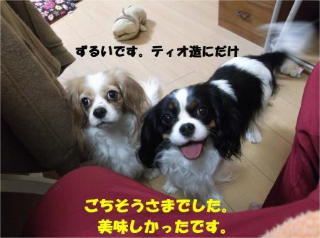 03_convert_20140107183539.jpg