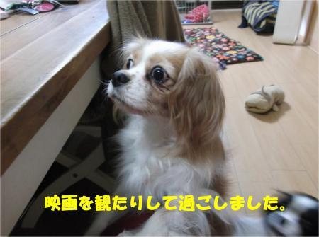 03_convert_20140108174640.jpg
