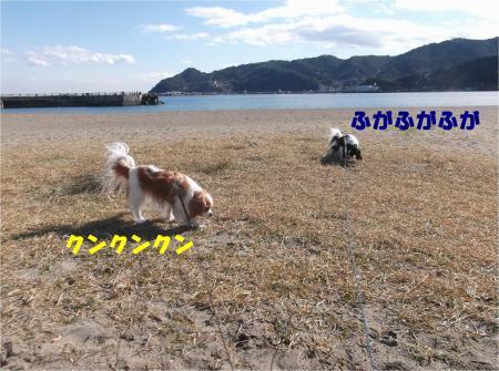 03_convert_20140111135019.jpg
