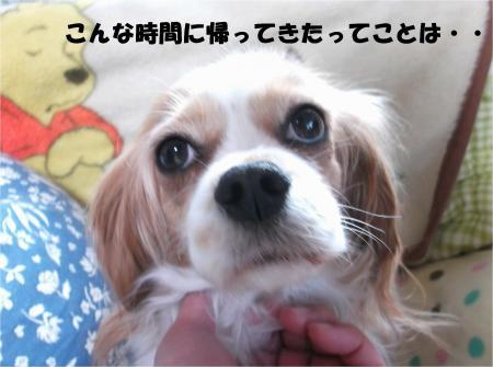 03_convert_20140117201608.jpg