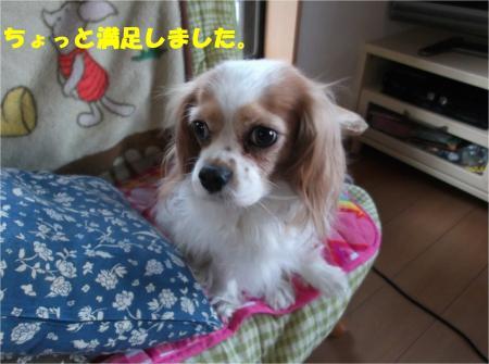 03_convert_20140122200432.jpg