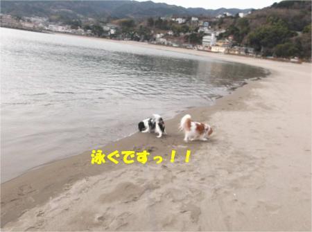03_convert_20140125143935.jpg