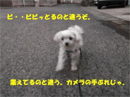 03_convert_20140201195639.jpg