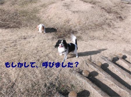 03_convert_20140203171544.jpg