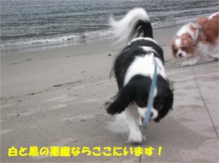 03_convert_20140210183326.jpg