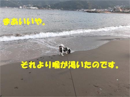 04_convert_20121029173539.jpg