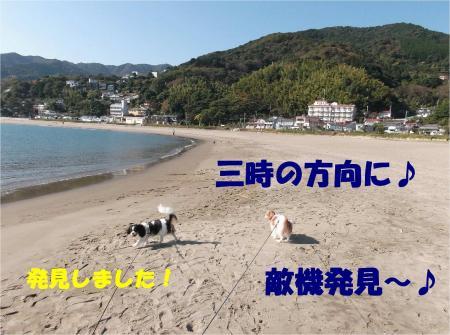 04_convert_20121105174547.jpg