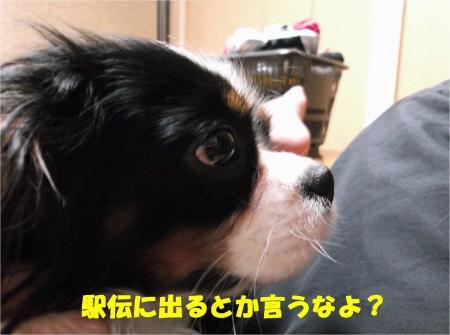 04_convert_20121207195036.jpg