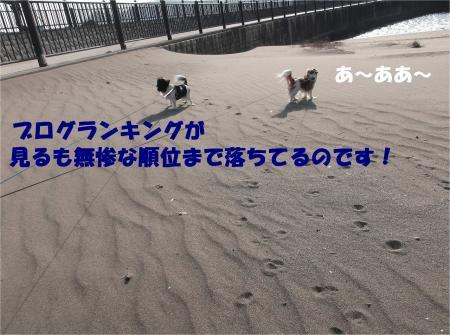 04_convert_20140106162147.jpg
