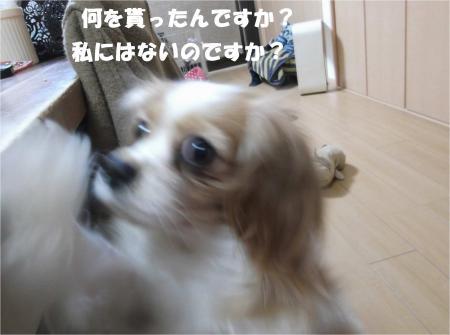 04_convert_20140107183548.jpg