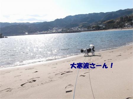 04_convert_20140111135029.jpg