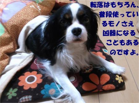 04_convert_20140115193858.jpg