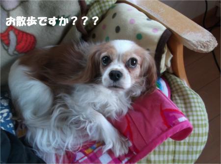 04_convert_20140123190948.jpg