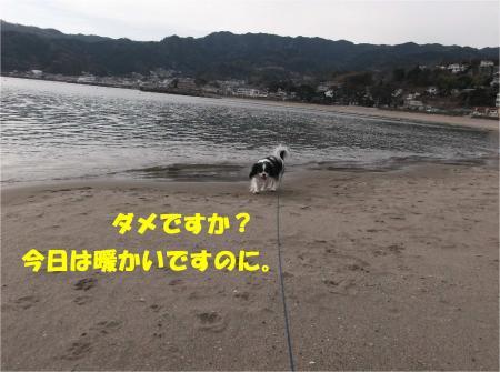 04_convert_20140125143948.jpg