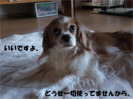 04_convert_20140128181552.jpg