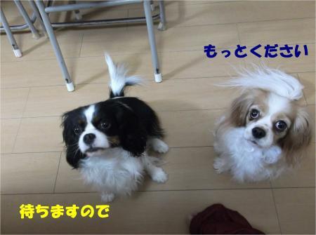 04_convert_20140131183019.jpg