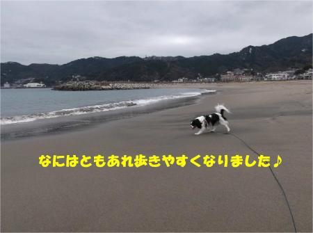 04_convert_20140210183338.jpg