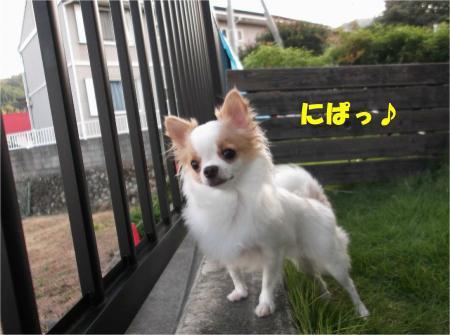 05_convert_20121009182306.jpg