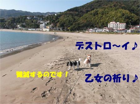 05_convert_20121105174602.jpg