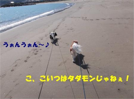 05_convert_20121113171955.jpg
