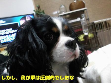 05_convert_20121120193243.jpg