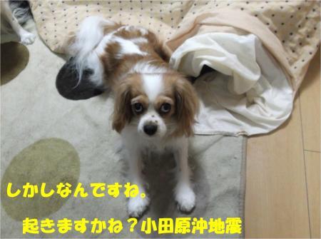 05_convert_20121127174817.jpg