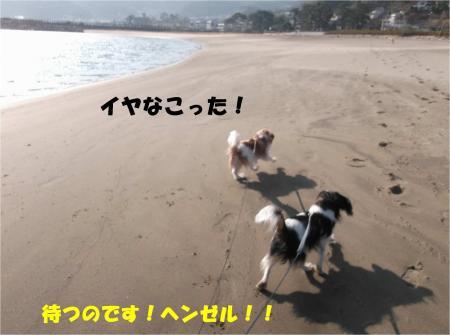 05_convert_20140108174659.jpg