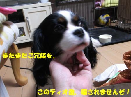 05_convert_20140110164049.jpg