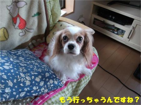 05_convert_20140122200450.jpg