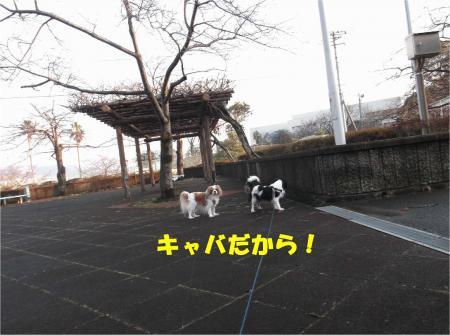 05_convert_20140127181653.jpg
